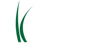 https://allscapesoh.com/drainage-landscaping-services/drainage-system/