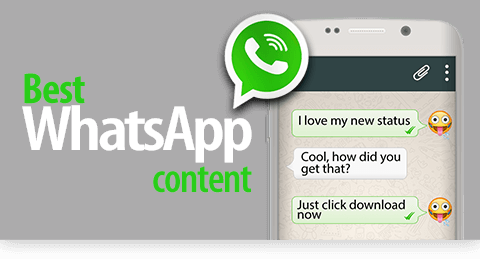 Followers Sa Whatsapp Status